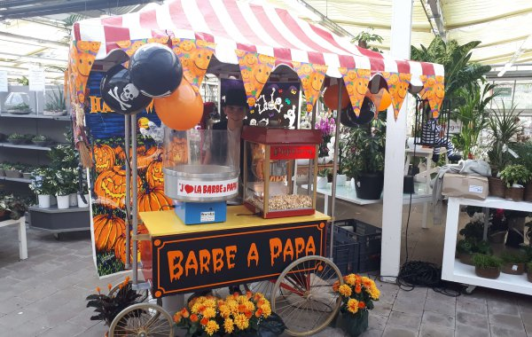 Stand barbe à papa & pop-corn sur grand chariot
