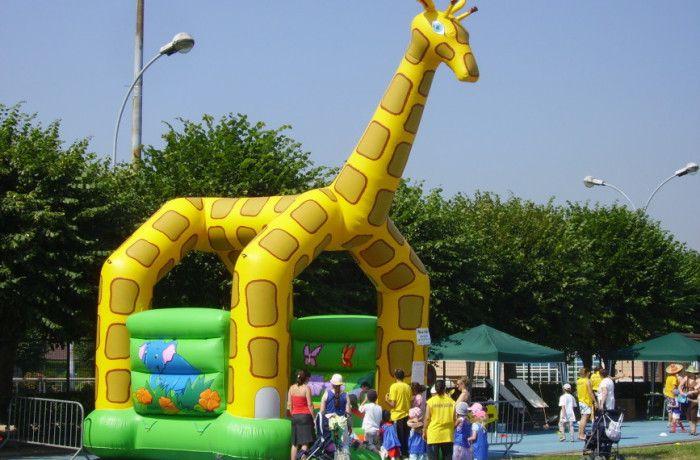 location Girafe ile de france
