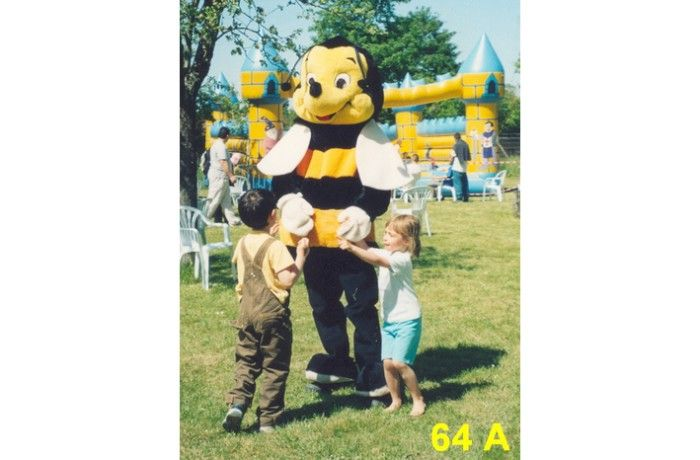 location Mascotte abeille 64 A ile de france