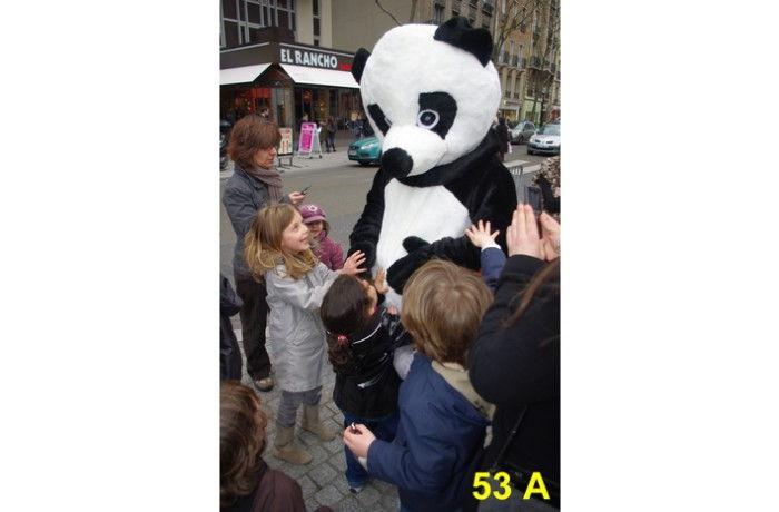 location Mascotte panda 53 A ile de france
