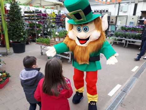 location Mascotte St Patrick 100A ile de france